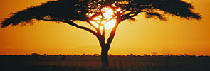 About Tanzania - Ebony Tours & Safaris